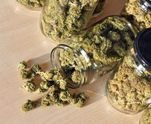 MJS Packaging Exhibits at Michigan's Largest Cannabis Summit Expo